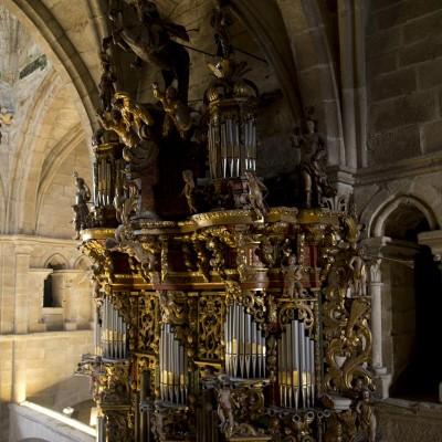 g_catedral_tui_077