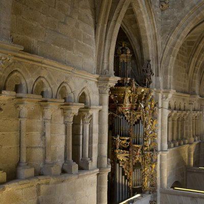 g_catedral_tui_050